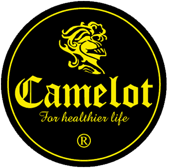 camelot water logo